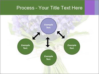 Flowers iris PowerPoint Template - Slide 91