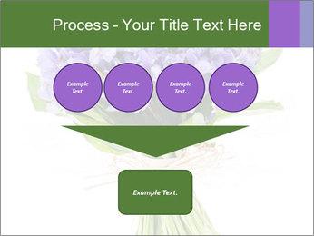 Flowers iris PowerPoint Template - Slide 93