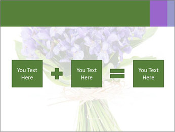 Flowers iris PowerPoint Template - Slide 95