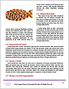 0000093097 Word Templates - Page 4