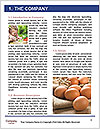 0000093099 Word Template - Page 3