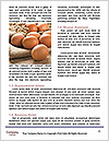 0000093099 Word Template - Page 4