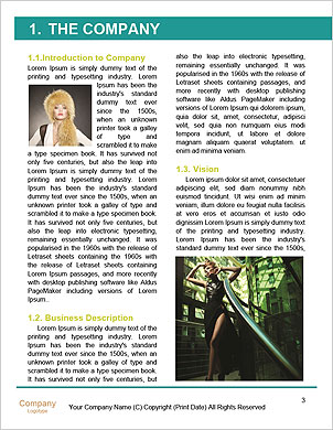 0000093100 Word Template - Page 3