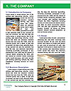 0000093107 Word Template - Page 3