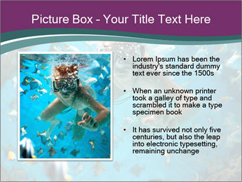 Brain coral PowerPoint Templates - Slide 13