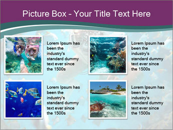 Brain coral PowerPoint Templates - Slide 14