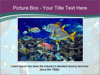 Brain coral PowerPoint Templates - Slide 15
