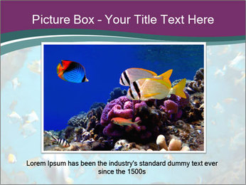 Brain coral PowerPoint Templates - Slide 16