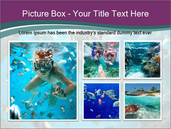 Brain coral PowerPoint Templates - Slide 19