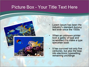 Brain coral PowerPoint Templates - Slide 20
