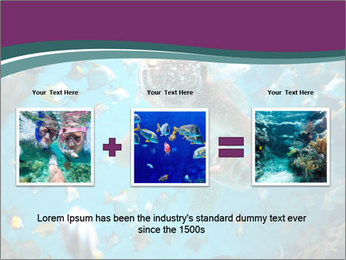 Brain coral PowerPoint Templates - Slide 22