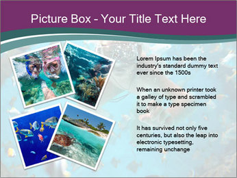 Brain coral PowerPoint Templates - Slide 23