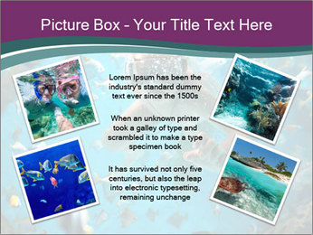 Brain coral PowerPoint Templates - Slide 24