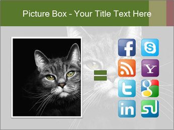 Grey cat PowerPoint Templates - Slide 21