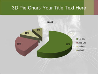Grey cat PowerPoint Templates - Slide 35