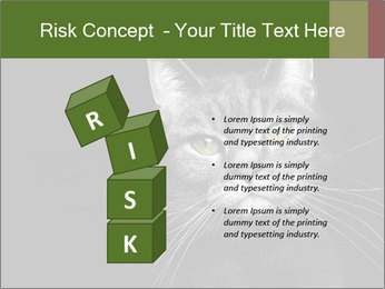 Grey cat PowerPoint Templates - Slide 81