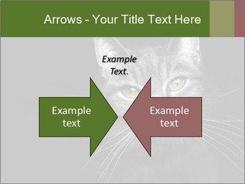 Grey cat PowerPoint Templates - Slide 90