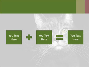 Grey cat PowerPoint Templates - Slide 95