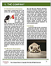 0000093113 Word Template - Page 3