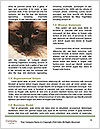 0000093113 Word Template - Page 4