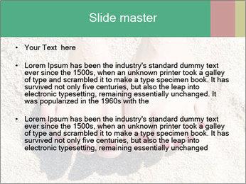Female feet PowerPoint Template - Slide 2