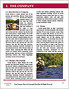 0000093118 Word Template - Page 3