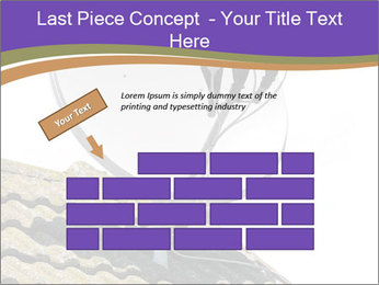 0000093126 PowerPoint Template - Slide 46