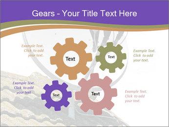 0000093126 PowerPoint Template - Slide 47