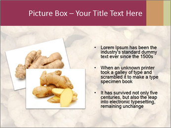Heap of ginger root PowerPoint Template - Slide 20