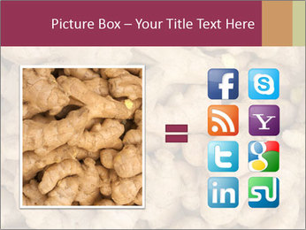 Heap of ginger root PowerPoint Template - Slide 21