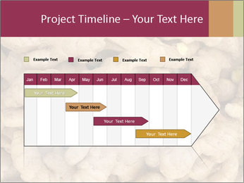 Heap of ginger root PowerPoint Template - Slide 25
