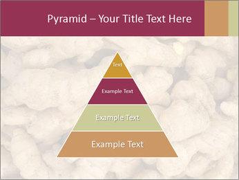 0000093127 PowerPoint Template - Slide 30