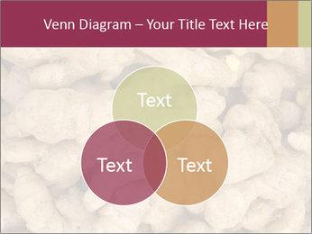 0000093127 PowerPoint Template - Slide 33