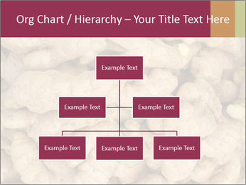 0000093127 PowerPoint Template - Slide 66