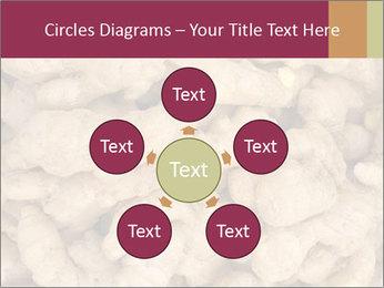 0000093127 PowerPoint Template - Slide 78