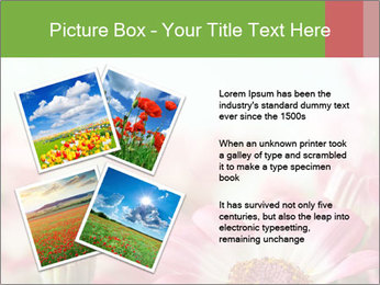 0000093131 PowerPoint Template - Slide 23