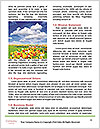 0000093131 Word Template - Page 4