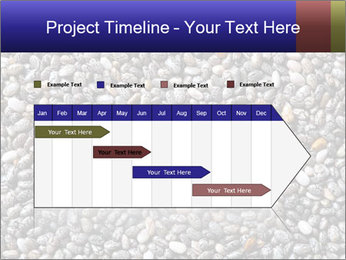 Chia seeds PowerPoint Template - Slide 25