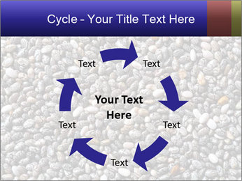 Chia seeds PowerPoint Template - Slide 62
