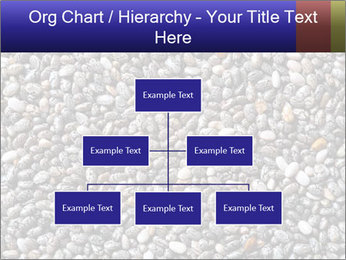 Chia seeds PowerPoint Template - Slide 66