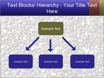 Chia seeds PowerPoint Template - Slide 69