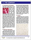 0000093132 Word Templates - Page 3