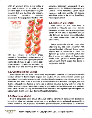 0000093132 Word Template - Page 4
