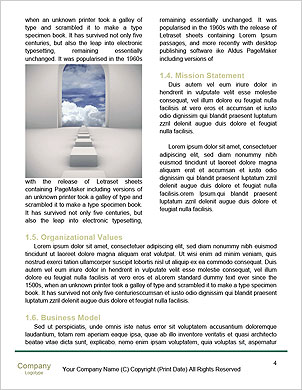 0000093140 Word Template - Page 4