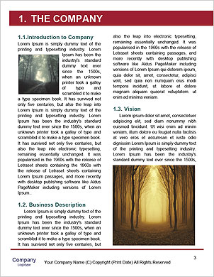 0000093149 Word Template - Page 3