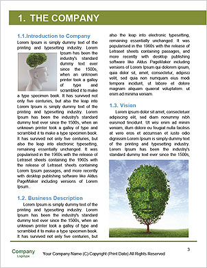 0000093167 Word Template - Page 3
