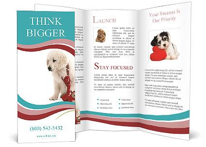 0000093170 Brochure Template
