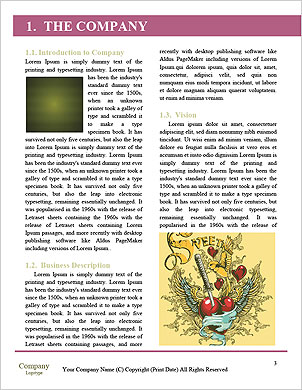 0000093189 Word Template - Page 3