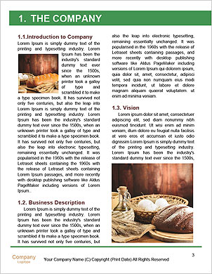 0000093195 Word Template - Page 3
