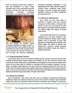 0000093195 Word Template - Page 4